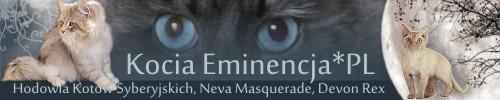 Kocia Eminencja